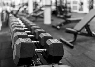 Fitness Luzern - Hantel für Krafttraining